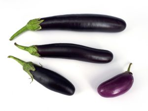 Eggplants © by Fructibus - https://commons.wikimedia.org/wiki/File:Four_eggplants_2017_A.jpg