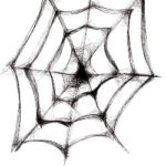 Drawn spider web. Source: https://torange.biz/