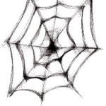 Drawn spider web. Source: https://torange.biz/